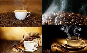 produkciya-dlya-kofejni-kak-vybrat-luchshee-kofe