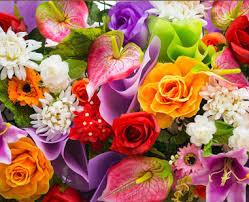 vybiraem-kompaniyu-kotoraya-osushchestvlyaet-dostavku-cvetov-v-dnepre-luchshe-ostalnyh